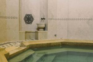 İsa Begov Hamam Hotel - фото 9