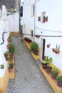 Casa do Alentejo, Apartmány  Elvas - big - 68