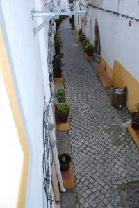 Casa do Alentejo, Apartmány  Elvas - big - 11