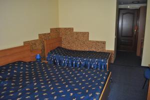 Inn Lisova Pisnya, Hotels  Dzvynyach - big - 8