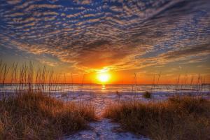 Belleview Gulf Condos, Ferienwohnungen  Clearwater Beach - big - 31
