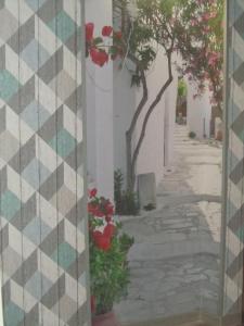 Апартаменты Гавана - фото 8