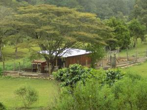 Rancho Hostal La Escondida Eco Park, Bed & Breakfast  Teopisca - big - 147