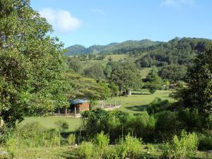 Rancho Hostal La Escondida Eco Park, Bed & Breakfast  Teopisca - big - 68