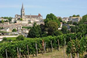 Mascarisle, Bed & Breakfasts  Libourne - big - 29
