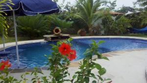 Casablanca, Villas  Playa Coronado - big - 4