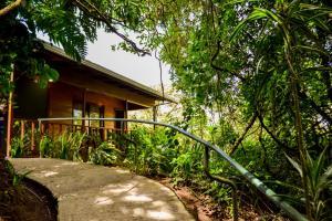 Monteverde Luxury Hostel