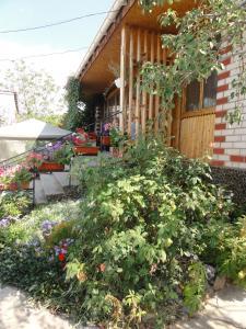 Guest House U Tatyany, Guest houses  Malorechenskoye - big - 59