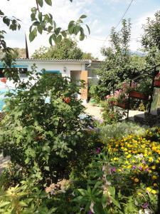 Guest House U Tatyany, Guest houses  Malorechenskoye - big - 44