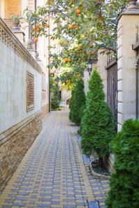Отель Касабланка - фото 14