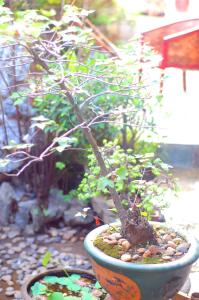 Ganzhou Qixi International Youth Hostel, Hostels  Ganzhou - big - 60