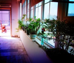 Ganzhou Qixi International Youth Hostel, Hostels  Ganzhou - big - 54
