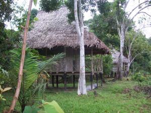 Abundancia Amazon Eco Lodge, Lodges  Santa Teresa - big - 1