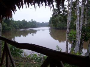 Abundancia Amazon Eco Lodge, Lodges  Santa Teresa - big - 8