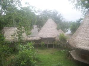 Abundancia Amazon Eco Lodge, Lodges  Santa Teresa - big - 5