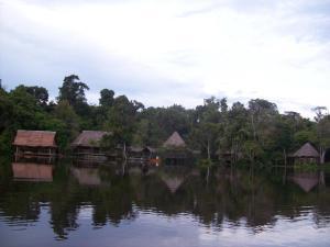 Abundancia Amazon Eco Lodge, Lodges  Santa Teresa - big - 4