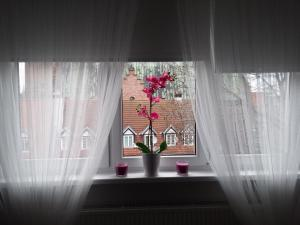 Apartament Heweliusza, Apartments  Gdańsk - big - 2