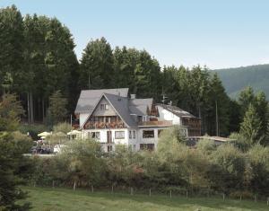 Wald Hotel Willingen - Willingen-Upland