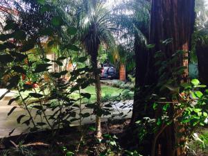 Hotel Villas Colibri, Hotels  Alajuela - big - 24