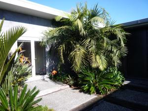 Karma Guesthouse, Bed & Breakfast  Kerikeri - big - 10