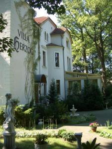 赫佐格别墅酒店 (Hotel Villa Herzog)