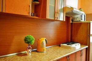 Apartment on Karbyszewa 1, Appartamenti  Grodno - big - 8