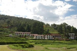 Drubchu Resort