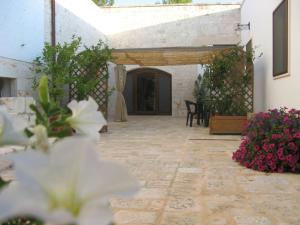 Nearby hotel : B&B Masseria Spilafemine