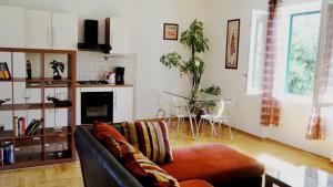 Luxurious Djuran Apartment