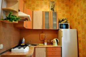 Апартаменты На Василька 4 - фото 9