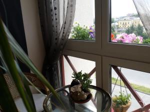Апартаменты 24 дом Тепличная 1 - фото 14
