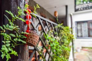 Suzhou Little Courtyard Inn