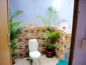 Blue Lagoon Resort Goa, Rezorty  Cola - big - 19