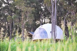 Mile End Glamping Pty Ltd - Margaret River Wine Region, Western Australia, Australia