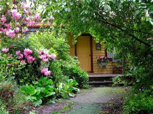 Lemonade Creek Cottages, Chaty v prírode  Lorne - big - 50