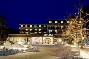 obrázek - Alpenhotel Weitlanbrunn