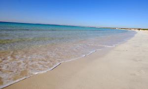 Colonia Beach House, Appartamenti  Colonia Sant Jordi - big - 5