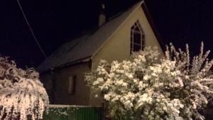 Гостевой дом У Алекса - фото 24