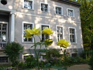 Pałac Sławnikowice
