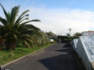 Quinta da Manguinha
