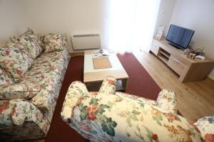 Apartments Kolonija - фото 7
