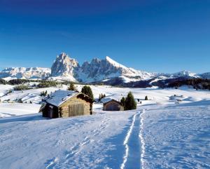 Crioli Dolomiti Lodge, Ferienwohnungen  Niederdorf - big - 39