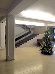 KenigAuto Hotel