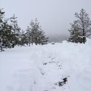 Previja Zlatibor Chalet, Chalet  Zlatibor - big - 62
