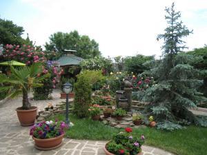 Гостевой дом Крым - фото 24