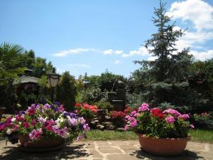 Гостевой дом Крым - фото 25