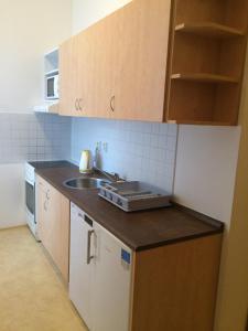 Apartment Krakovská