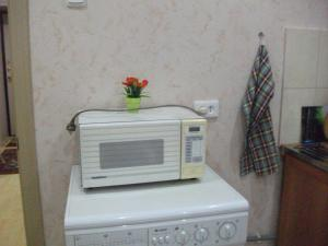 Апартаменты Владимир - фото 25