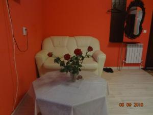 Мини-гостиница Новошоссейная - фото 7