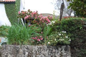 Casa da Quinta De S. Martinho, Penziony  Vila Real - big - 69